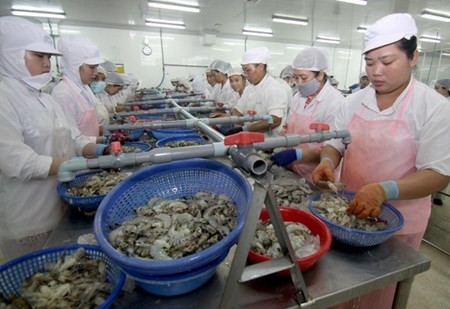 Bac Lieu to host Vietshrimp International Fair 2016 in June - ảnh 1