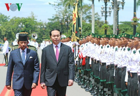 President Tran Dai Quang holds talks with Bruneian Sultan  - ảnh 1