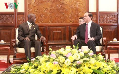 President Tran Dai Quang receives new Ambassadors - ảnh 5