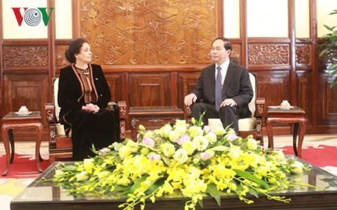 President Tran Dai Quang receives new Ambassadors - ảnh 7