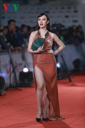 Celebrities on HANIFF red carpet - ảnh 5
