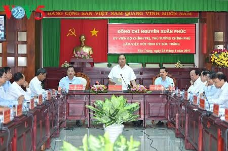 Soc Trang province to develop high-yield rice breeds and fruits - ảnh 1