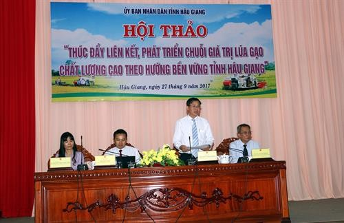 Hau Giang hosts conference on high-quality rice production chain - ảnh 1