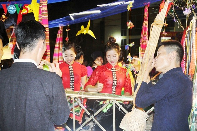 Muong Lo panpipe of the Thai - ảnh 1