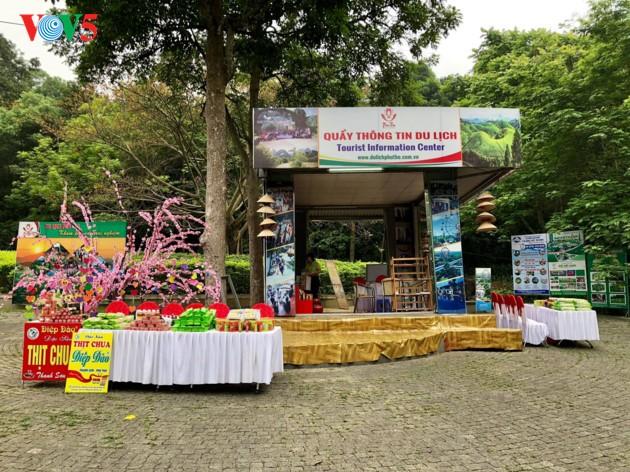 Hung Kings Temple Festival 2018 celebrated - ảnh 12