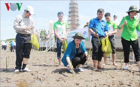 NA Chairwoman plants trees at national trig point in Ca Mau - ảnh 1
