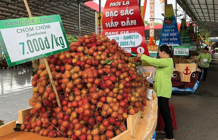 4th Southern Fruit Festival 2018 highlights floating market - ảnh 2