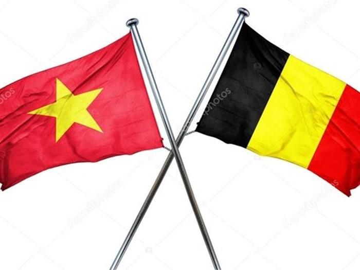 Friendship exchange marks Vietnam-Belgium diplomatic ties - ảnh 1