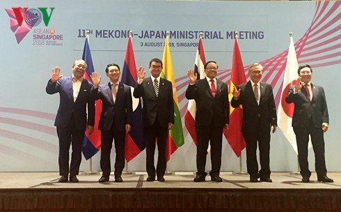 11th Mekong-Japan Foreign Ministers' Meeting held - ảnh 1