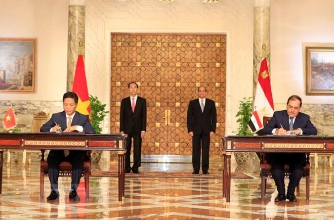 Vietnam, Egypt issue joint statement - ảnh 1