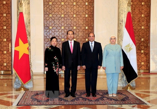 President's visits to Ethiopia, Egypt create momentum for bilateral ties - ảnh 2