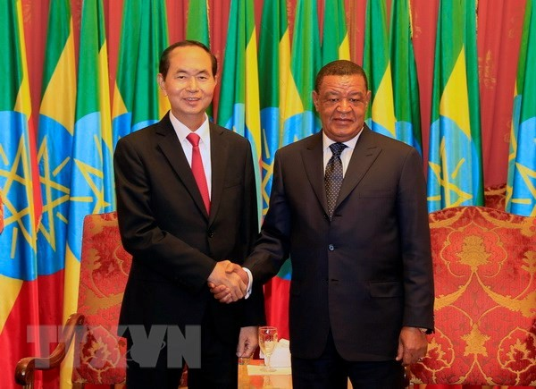 President's visits to Ethiopia, Egypt create momentum for bilateral ties - ảnh 1