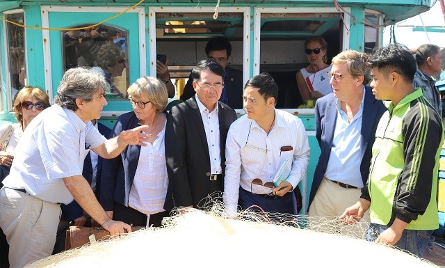 EP delegation works with Hai Phong city on IUU fishing - ảnh 1
