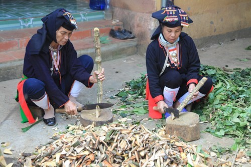 Medicinal herbs of the Dao people - ảnh 2