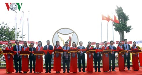 Vietnam-Japan Industrial Park inaugurated on 45th anniversary of diplomatic ties - ảnh 1