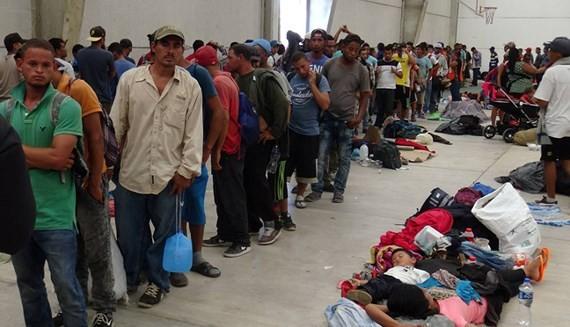 Migration pact losing momentum  - ảnh 1
