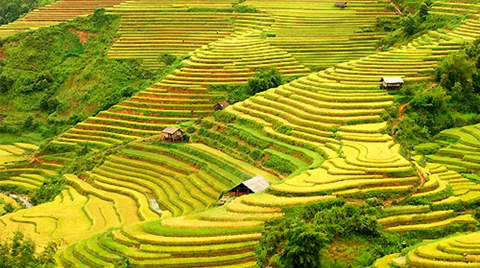 Hoang Su Phi terraced fields, masterpieces of minority groups - ảnh 2