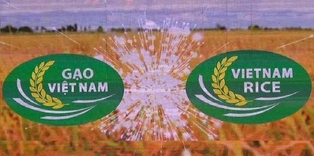 Third Vietnam Rice Festival opens - ảnh 2