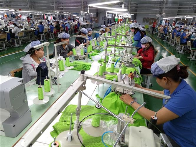 Apparel sector earns 36 billion USD from exports in 2018 - ảnh 1