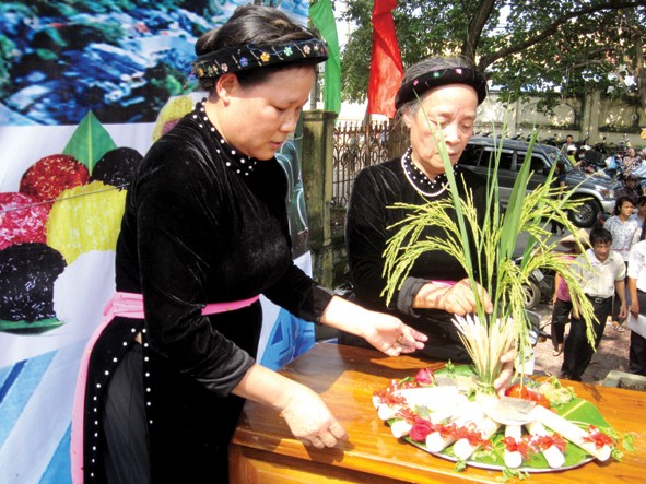 New Rice Festival of the Tay - ảnh 1