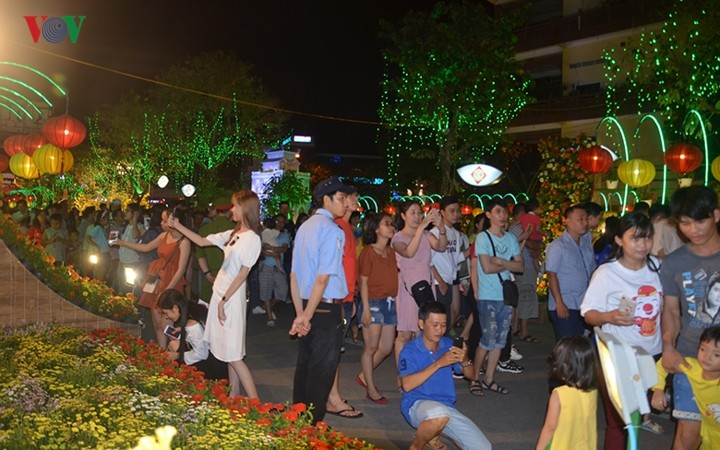 Can Tho's Floral Lantern Street welcomes Tet - ảnh 1