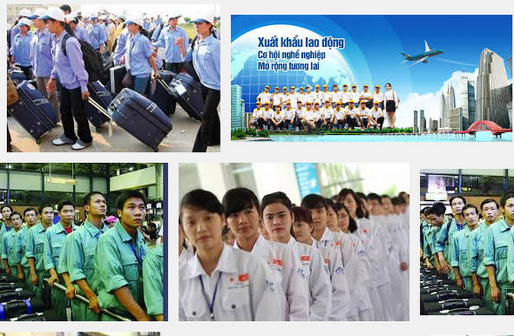 Countries keen to recruit Vietnamese workers - ảnh 1