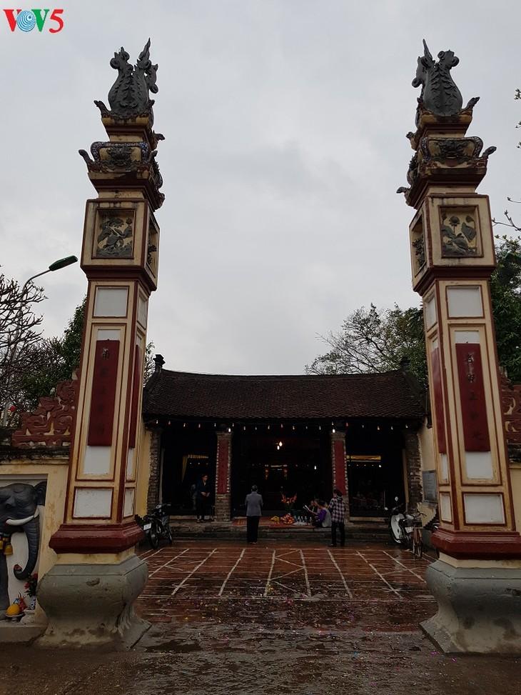 Pig procession festival in La Phu village - ảnh 1