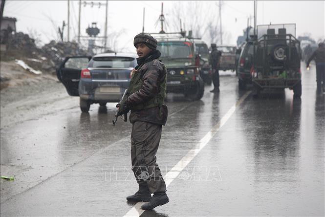 Pakistan, India resume barter trade  - ảnh 1