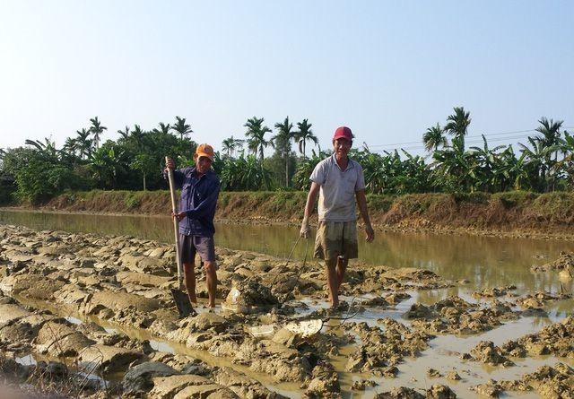 Cong Luong village, where men do farm work, women stay home - ảnh 2