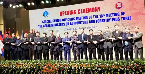 ASEAN+3 discuss cooperation in agriculture, forestry - ảnh 1
