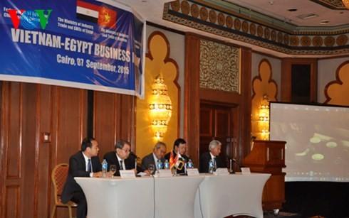 Le forum d'affaires Vietnam – Egypte - ảnh 1