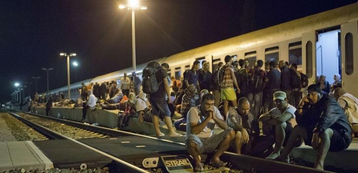 Crise des migrants : la Croatie ferme à son tour une partie de ses frontières - ảnh 1