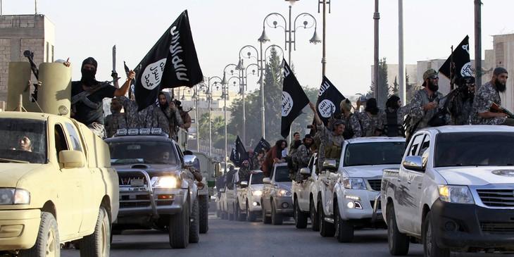 2015 : une année terrible pour le Moyen-Orient - ảnh 1