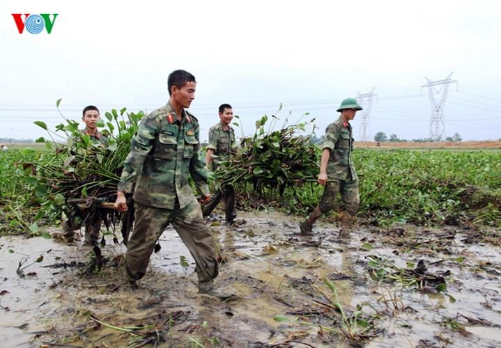 Rizières en danger: les soldats et les jeunes se mobilisent - ảnh 5