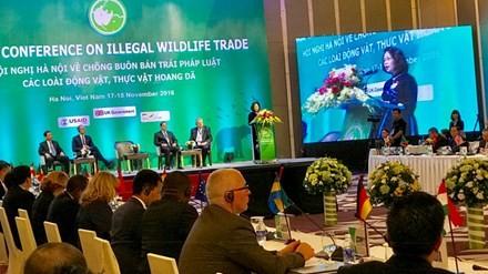 Le Vietnam lutte contre le trafic d'espèces sauvages - ảnh 1