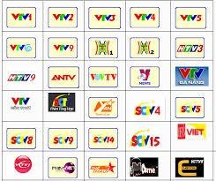 La télévision au Vietnam - ảnh 1