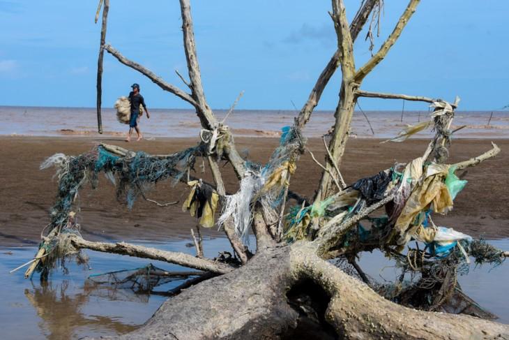 Sauvez la mer! Seule l'action crée le changement - ảnh 5