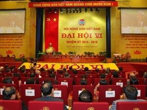 Memilih Pengurus Besar Himpunan Tani Vietnam angkatan ke-6 - ảnh 1