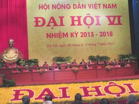 Himpunan Tani Vietnam menjadi poros dalam gerakan pembangunan pedesaan baru - ảnh 1