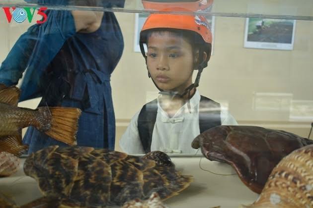 Pameran memuliakan nilai-nilai budaya laut dan pulau Vietnam - ảnh 1