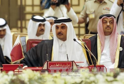 Qatar mengimbau pemecahan perselisihan melalui dialog - ảnh 1