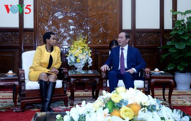 Presiden Tran Dai Quang menerima Duta Besar Afrika Selatan yang datang beraudiensi sehubungan dengan akhir masa baktinya - ảnh 1