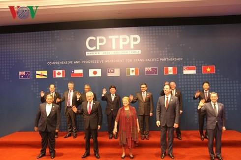 CP TPP: Manifestasi integrasi internasional Vietnam berada pada taraf baru - ảnh 1