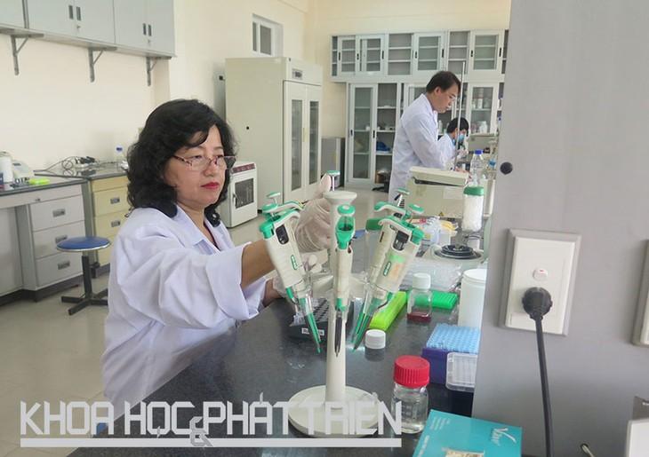 Dinh Thi Bich Lan- Ilmuwan wanita yang gandrung  melakukan penelitian dan kerja kreatif - ảnh 1