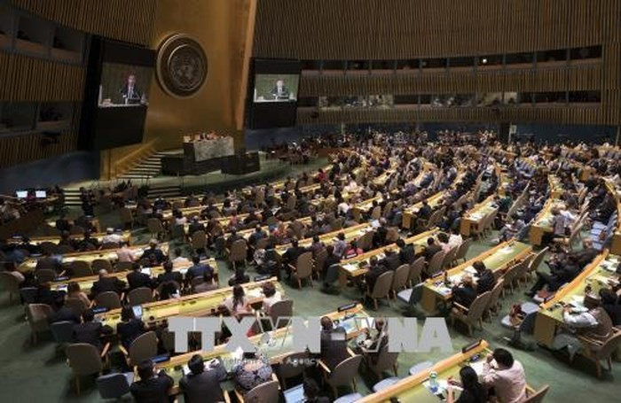 Majelis Umum PBB menyetujui traktat global tentang imigrasi - ảnh 1