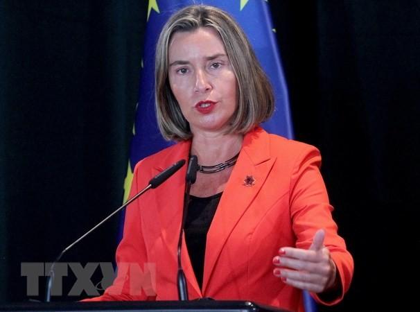 Uni Eropa membuka kembali perutusan diplomatiknya di Libia - ảnh 1