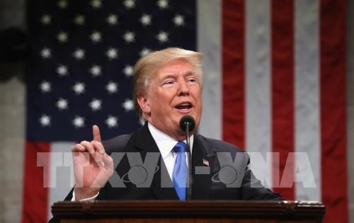 Presiden AS, Donald Trump membuka kemungkinan mencalonkan diri untuk masa bakti ke-2 - ảnh 1