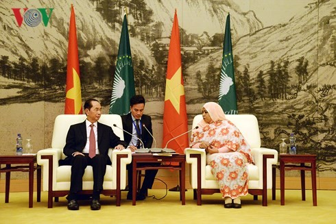 Viet Nam dan negara-negara Afrika selalu saling mendukung dan membantu - ảnh 1