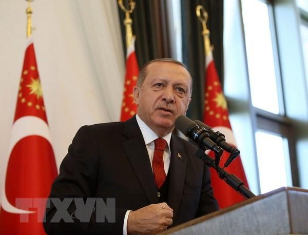 Presiden Turki, Recep Tayyip Erdogan akan segera mengunjungi Rusia - ảnh 1