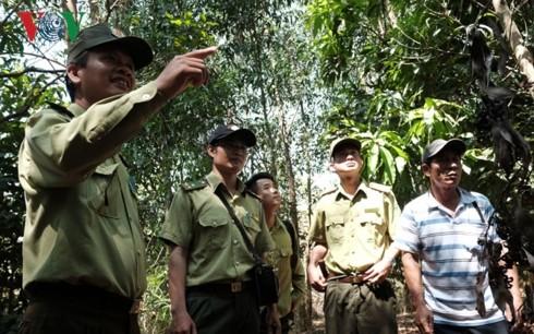 Para penjaga hutan pada musim kemarau di Provinsi Dong Nai - ảnh 1